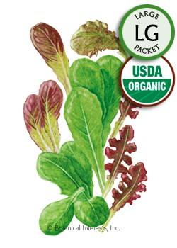 Baby Greens Market Day Lettuce Mesclun Organic Seeds (LG)
