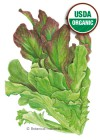 Lettuce Leaf Salad Bowl Blend Organic HEIRLOOM Seeds