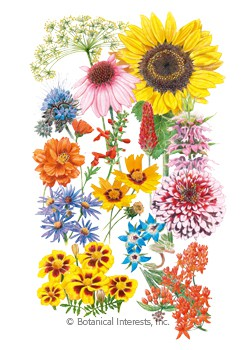 Flower Mix Precious Pollinators Seeds