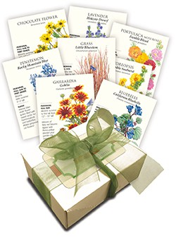 Water-Wise Flower Seed Collection